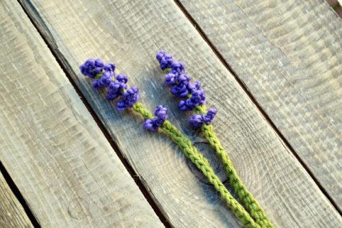 Exemple de fleur de lavande