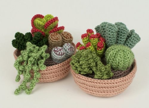 Exemple de motif de crochet de fleurs réalistes succulentes